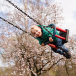 Boy on swing at California Country Park